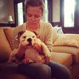 Brooklyn Decker cuddled with her pooch. Source: Twitter user BrooklynDecker