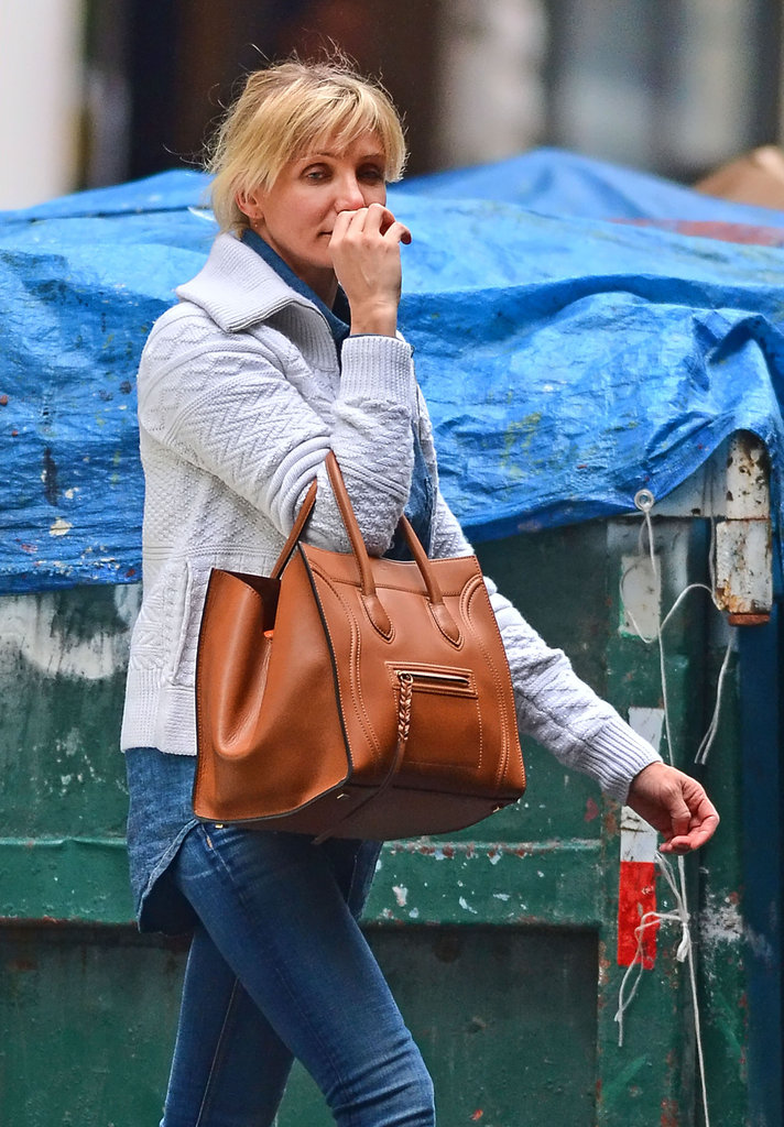 Cameron Diaz carried a brown Chloé bag in NYC.