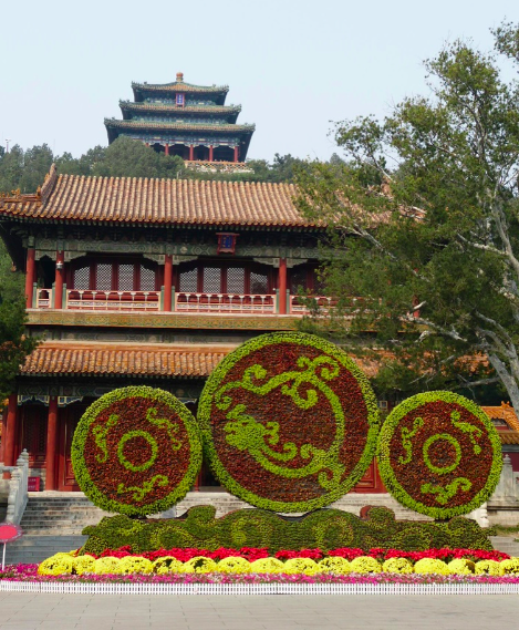 Flower power in China