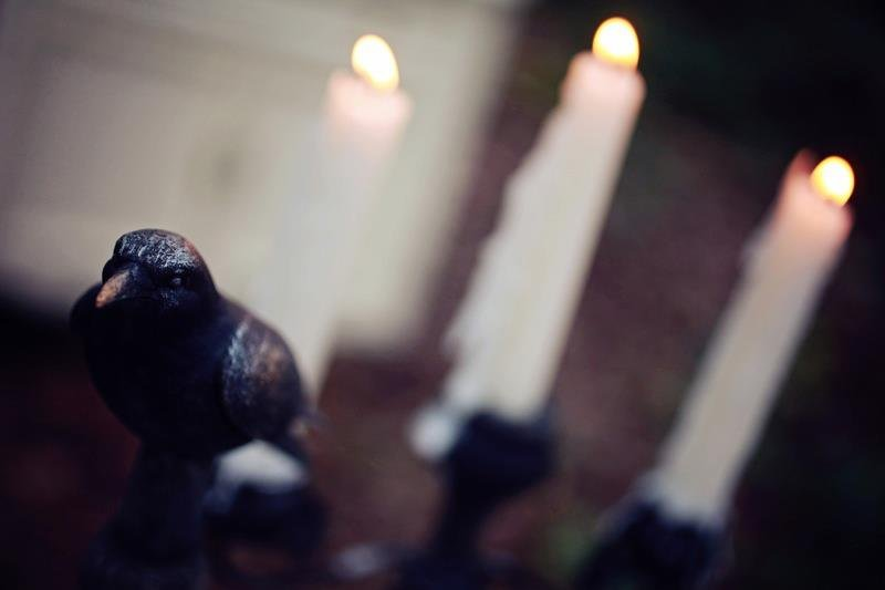 Crow in Candlelight