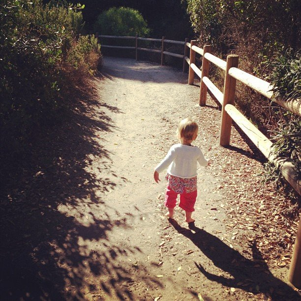Pink enjoyed a lazy stroll to the beach with lil Willow. Source: Instagram user pink