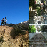 Beachwood Canyon Hollywood Hills Hike