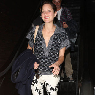 Marion Cotillard Wearing Bird Pants
