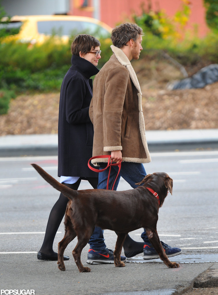 Anne Hathaway and Adam Shulman walked their dog in Brooklyn.