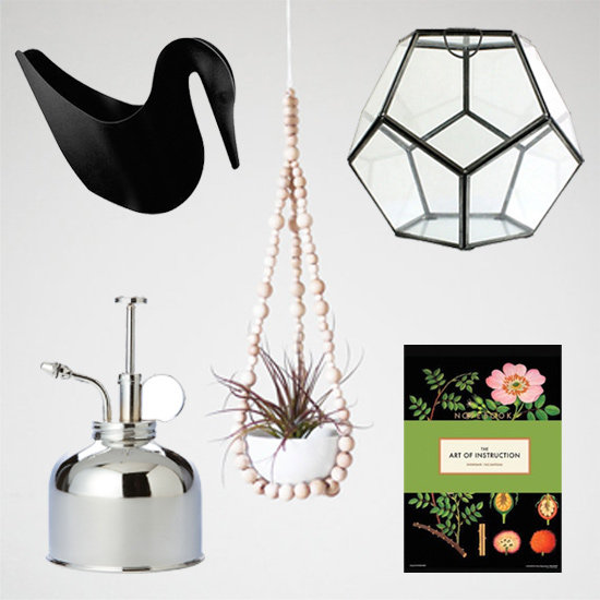 Gift Guide: Cool Picks For Modern Plant Lovers