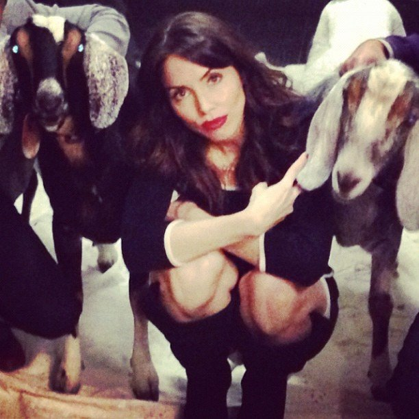 Whitney Cummings posed with goats. Source: Instagram user therealwhitney