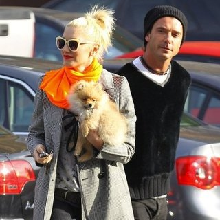 Gwen Stefani and Gavin Rossdale Walking With Their Dog in LA
