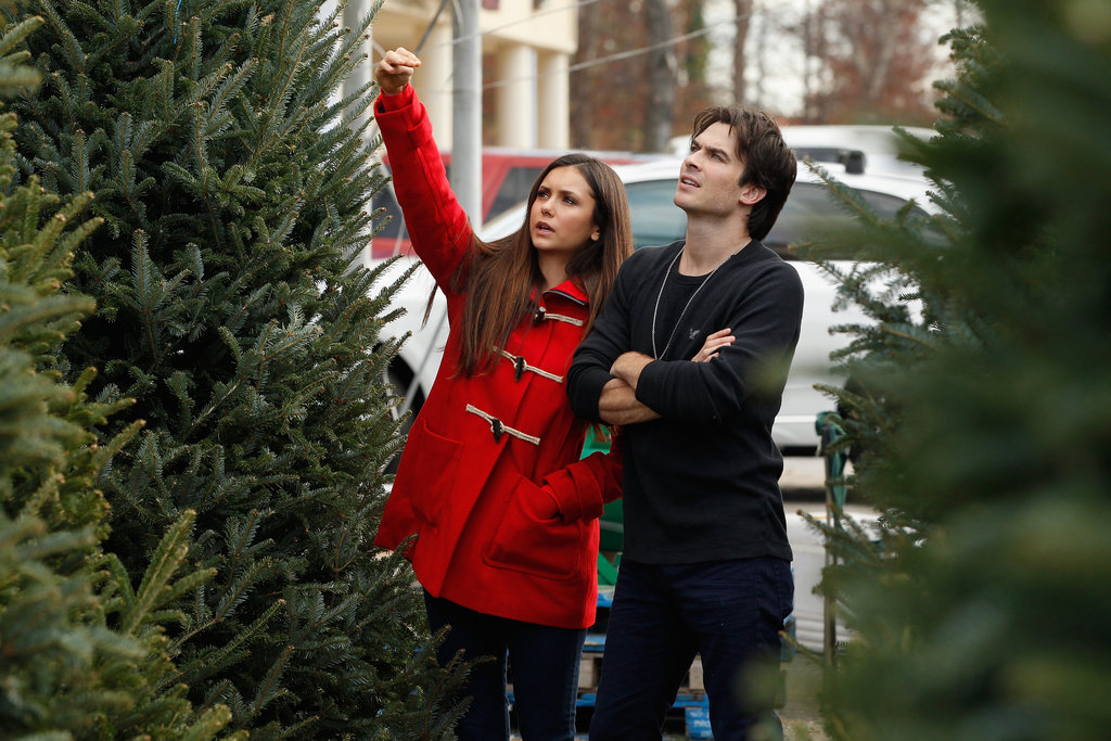 Nina Dobrev and Ian Somerhalder shopped for Christmas trees.