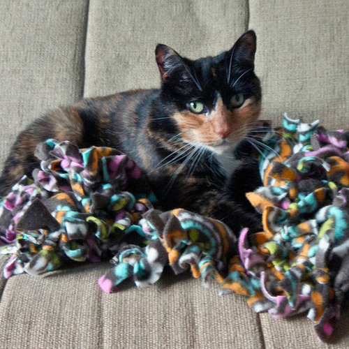 DIY Pet Blanket
