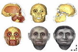 A Real-Life Hobbit Facial Reconstruction