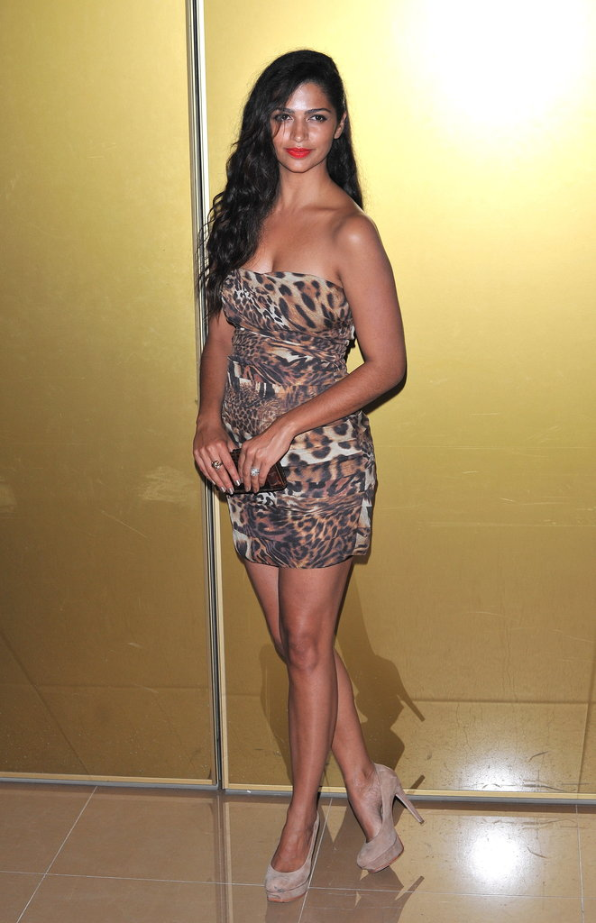 A pregnant Camila Alves rocked a strapless leopard-print number for an event in October.