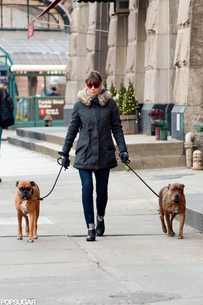 Jessica Biel took her dogs for a Saturday stroll.