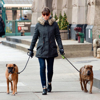 Jessica Biel Walks Her Dogs in NYC