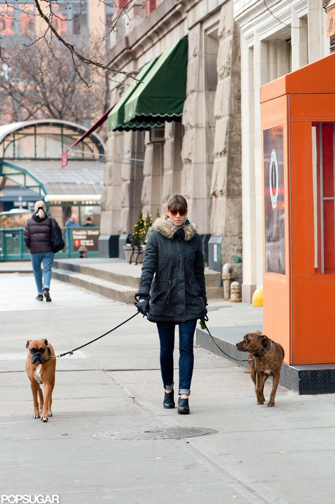 Jessica Biel took her dogs for a walk around NYC.
