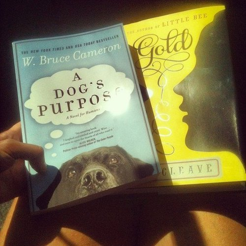 Instagram user ladouleurexquise7 picked up these two books for Fall.