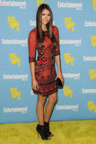 Nina added interest to an already intricately adorned Jenny Packham mini with a pair of open-toe Jimmy Choo booties at a 2012 Comic-Con party.