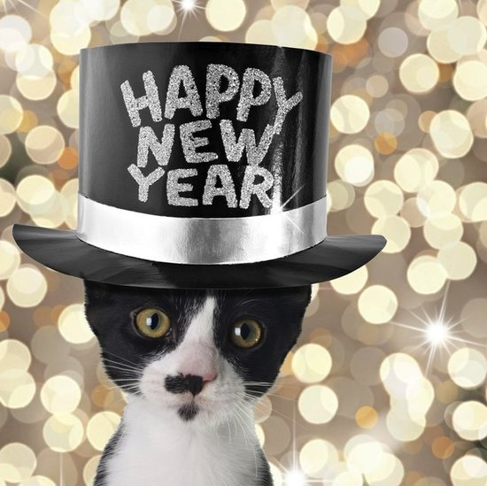 7 New Year's Resolutions to Make With Your Pet