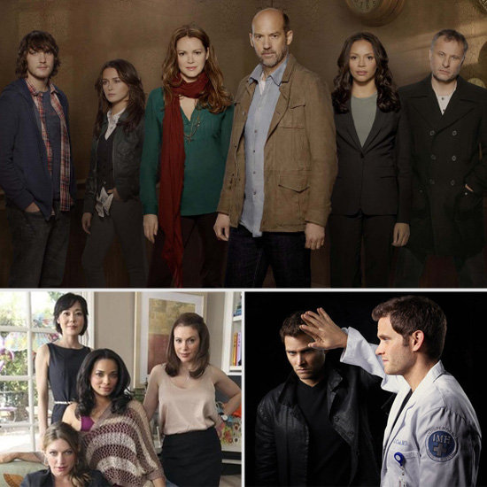 Midseason TV: Get to Know the New Shows