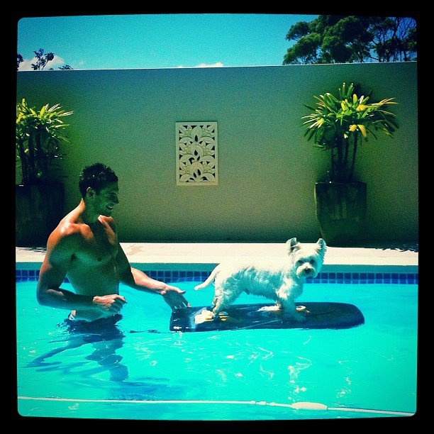 Megan Gale's boyfriend Shaun Hampson spent pool time with Megan's pup. Source: Instagram user megankgale