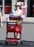 Britney Spears pushed a shopping trolley.