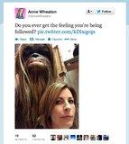 StarTrek: TNG actor Wil Wheaton better watch out. Looks like someone's got an eye on wife Anne Wheaton.