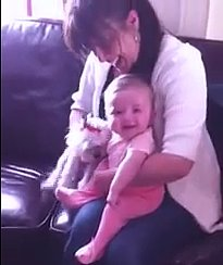 (VIDEO) Baby CRACKS UP Over Little Dog