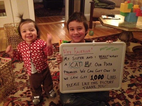 Boy Gets Pet After Convincing Dad with 110,000 Facebook 'Likes'