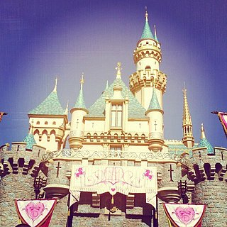 Sleeping Beauty Castle Picture