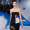 Christian Dior Runway Review | Fashion Week Fall 2013