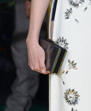 Michelle Williams actually gave us our first sneak peek of the Kate Young For Target line in action — she toted a sleek clutch for the LA premiere of Oz the Great and Powerful.