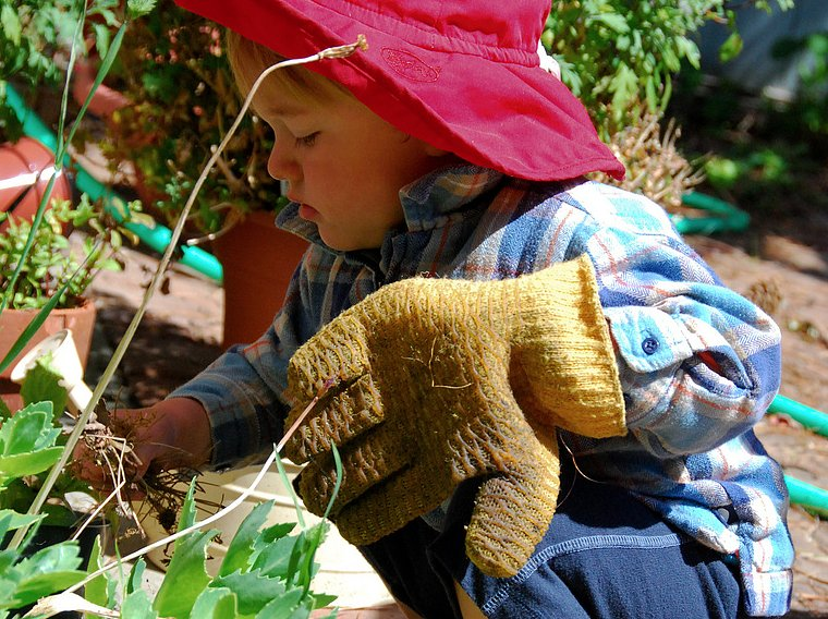 Gardening With the Little Ones