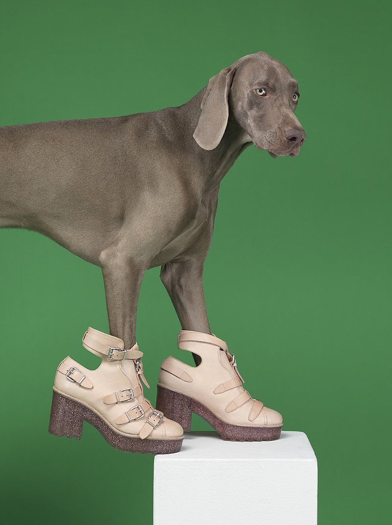Acne Spring 2013 photographed by William Wegman