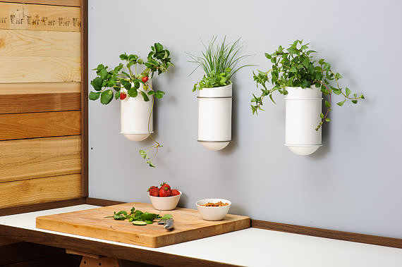 Although they look innocent enough, these laser-cut powder-coated steel planters ($98) are actually self-watering, perfect for the frequent flyer plant owner.