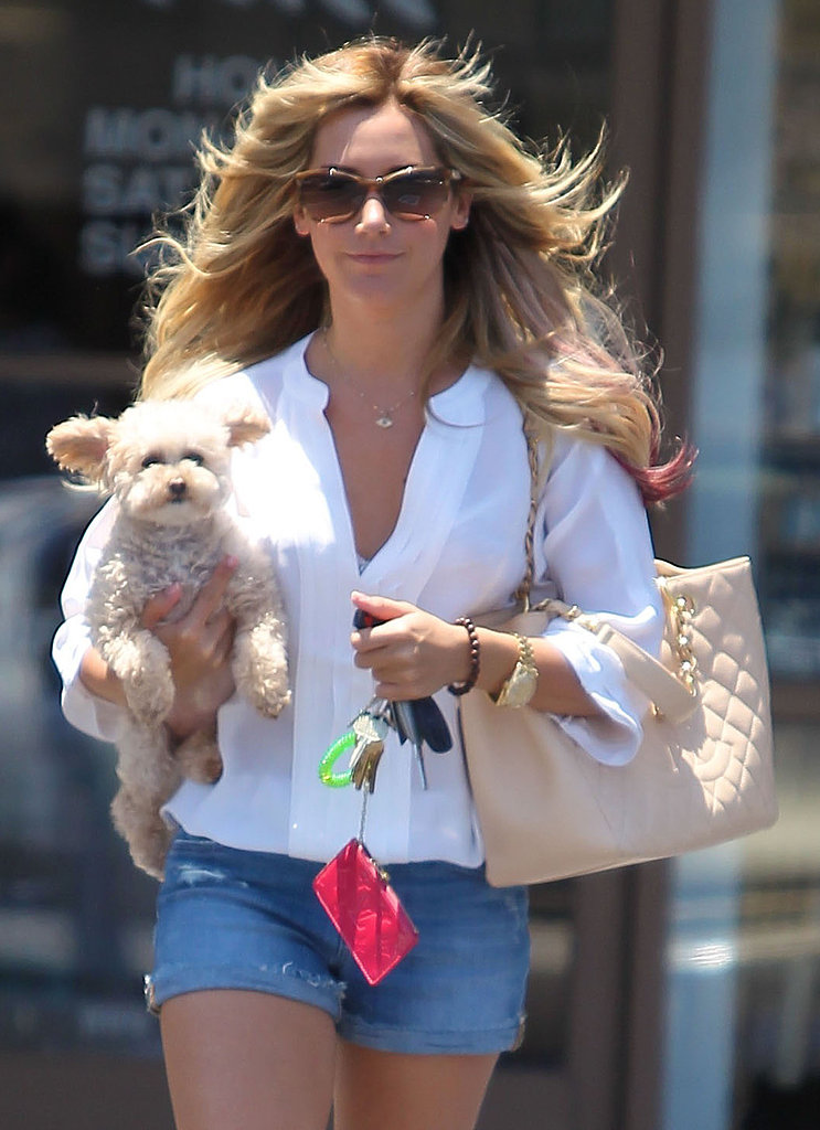Ashley Tisdale toted her her little love, Maui, in LA in June 2012. Ashley shared why she named her pup Maui in a personal video blog.