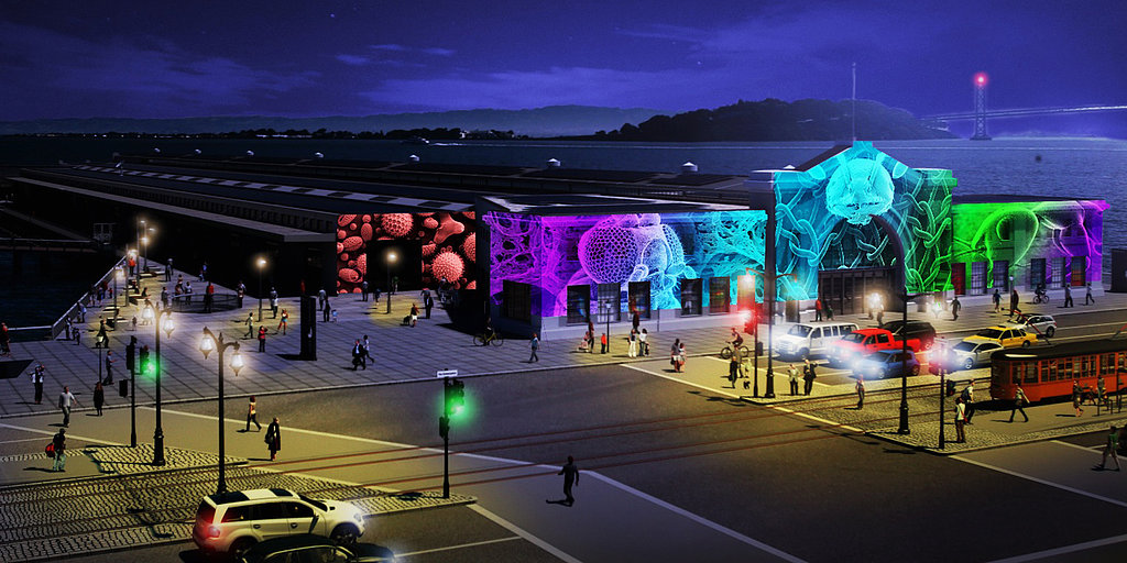 7 Must-See Science Exhibits From the New Exploratorium