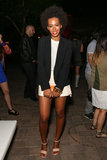 Solange Knowles posed at the Diesel + Edun bash in 2013.