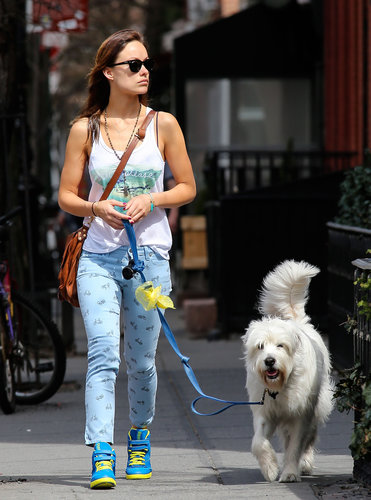 Olivia Wilde walked her dog wearing these adorable Paige Premium Denim blue bicycle-print jeans ($189) and funky two-tone sneakers.