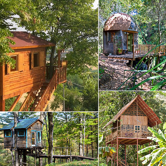 9 Tree House Rentals That Would Make Tarzan Jealous