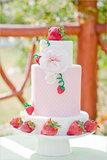 Strawberry Garden Photo by Melissa Biador via The Wedding Chicks