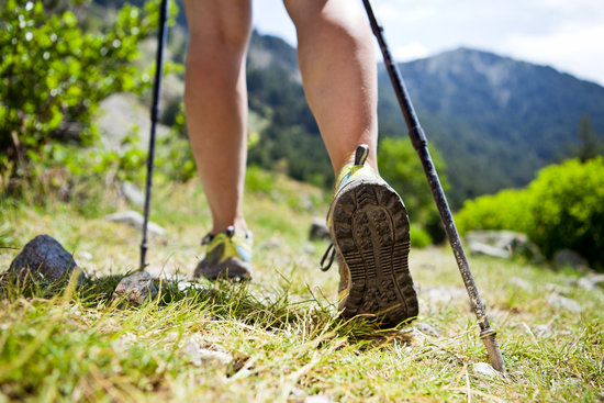 Earth Day Special: 10 Bushwalking Tips to Keep You Safe