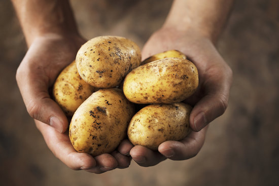 The Dirty Dozen: 12 Foods You Should (Ideally) Buy Organic