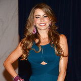 Sofia Vergara's Hair Evolution