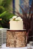 One-tiered cakes shouldn't be ruled out for your big day — this wedding proves that a classic cake can make an impact with a unique stand.   Photo by Priscila Valentina Photography via Green Wedding Shoes