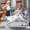 Cameron Diaz and Leslie Mann on Set With a Dog in NYC