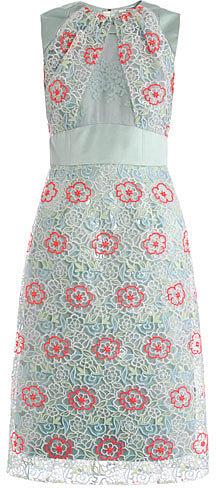 Erdem Alicia embroidered overlay dress