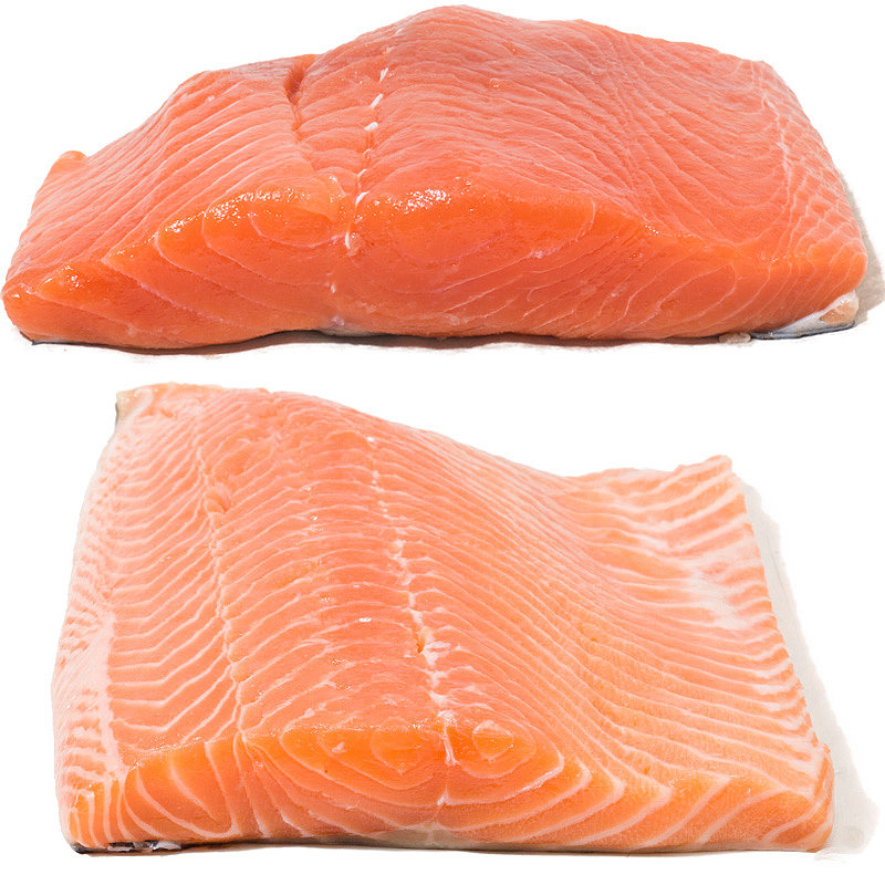Wild vs. Farmed Salmon