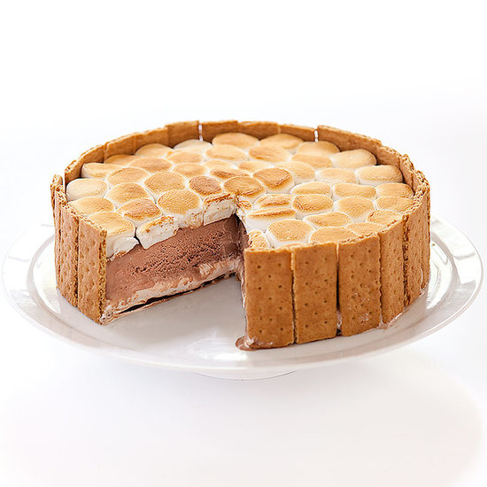 ... chocolate ice cream cake—complete with toasted marshmallows