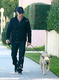 John Hamm took his dog for a neighborhood walk in LA in December 2011.