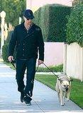 John Hamm took his dog for a neighborhood walk in LA in December 2011.