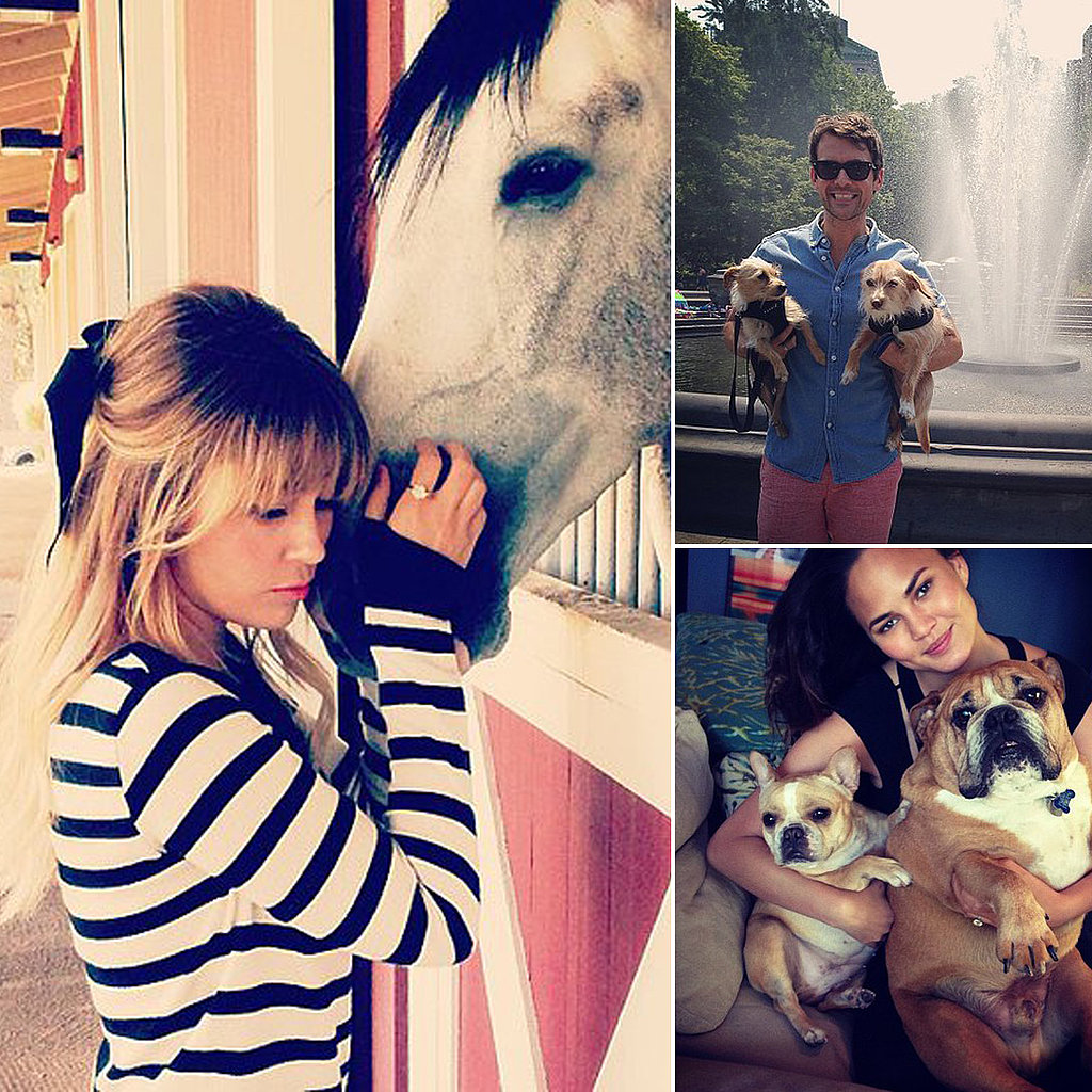 June Pics of Our Favorite Celebrities and Furry Friends